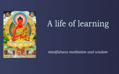 Learning with mindfulness and meditation